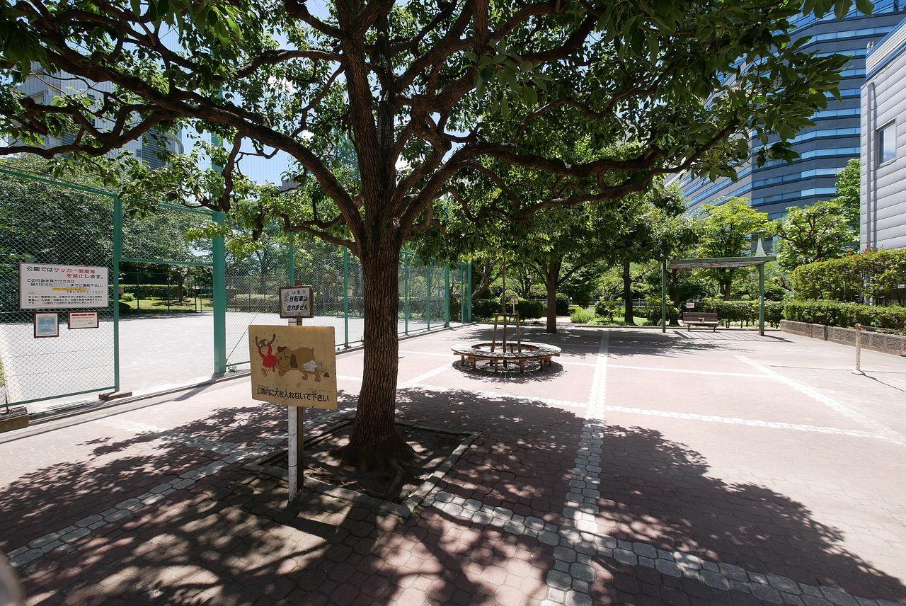 小関公園 ( こせきこうえん )