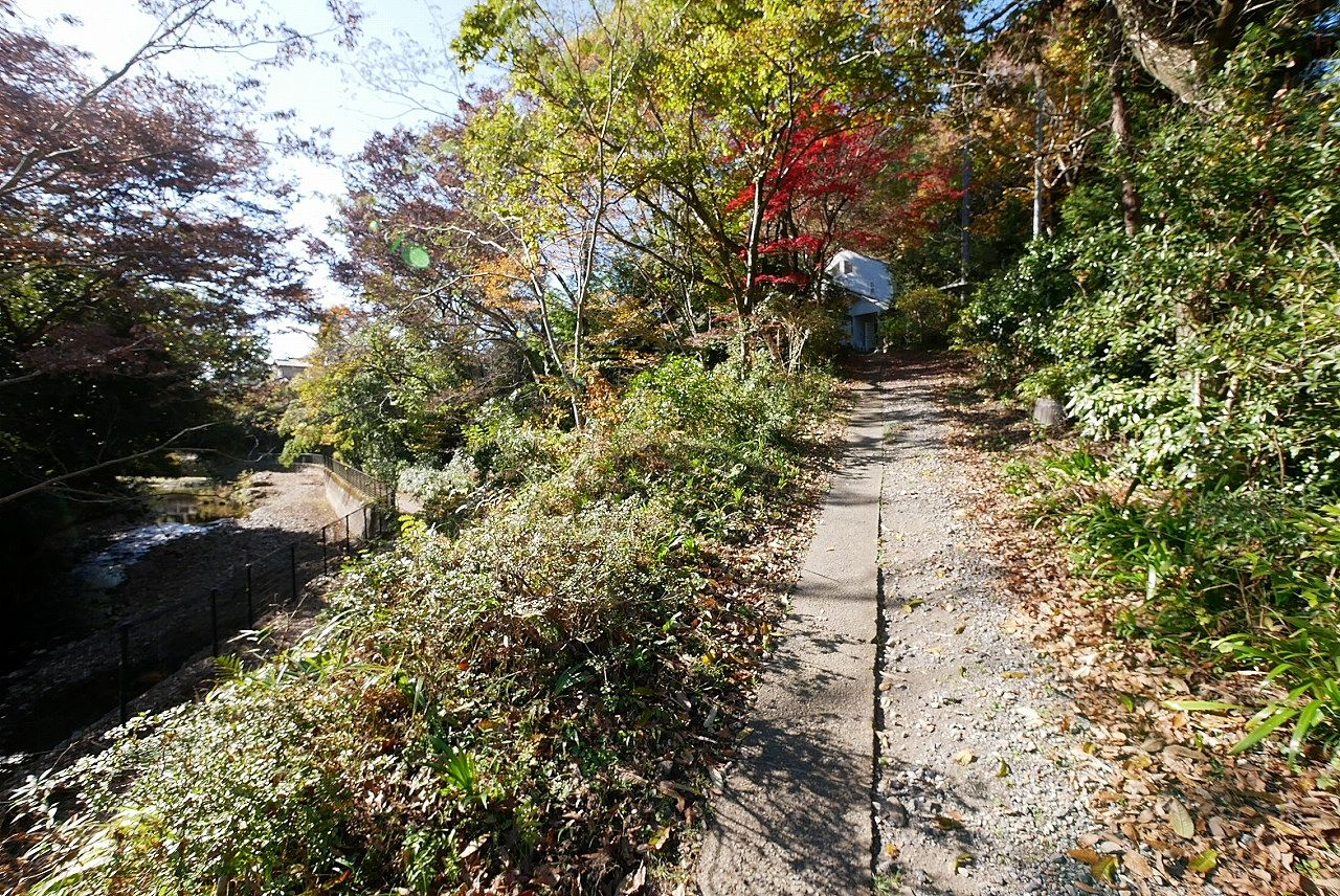 昔は階段にしていたそうです。車を使わなければ、裏山の木を使って階段を自作するのも楽しいかも!