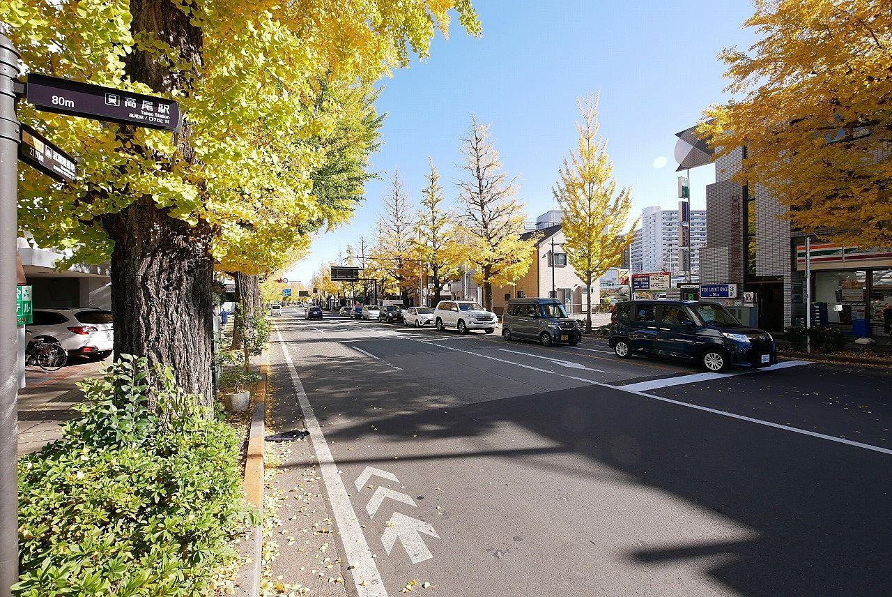 高尾駅北口の甲州街道沿いのイチョウ並木