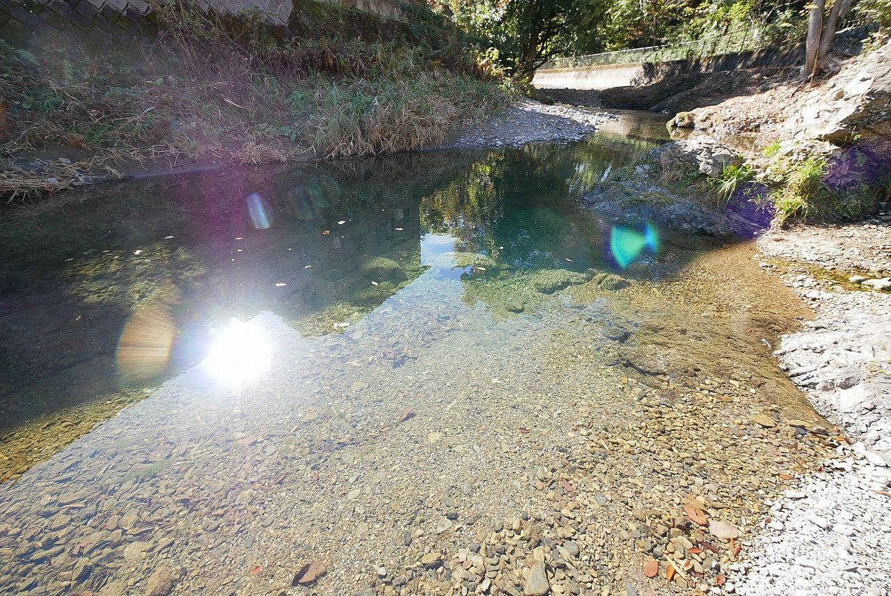 よく見るとたくさんの小魚がいます。流れが穏やかで水深が浅いのでお子さんも川遊びを楽しめるそうですよ!