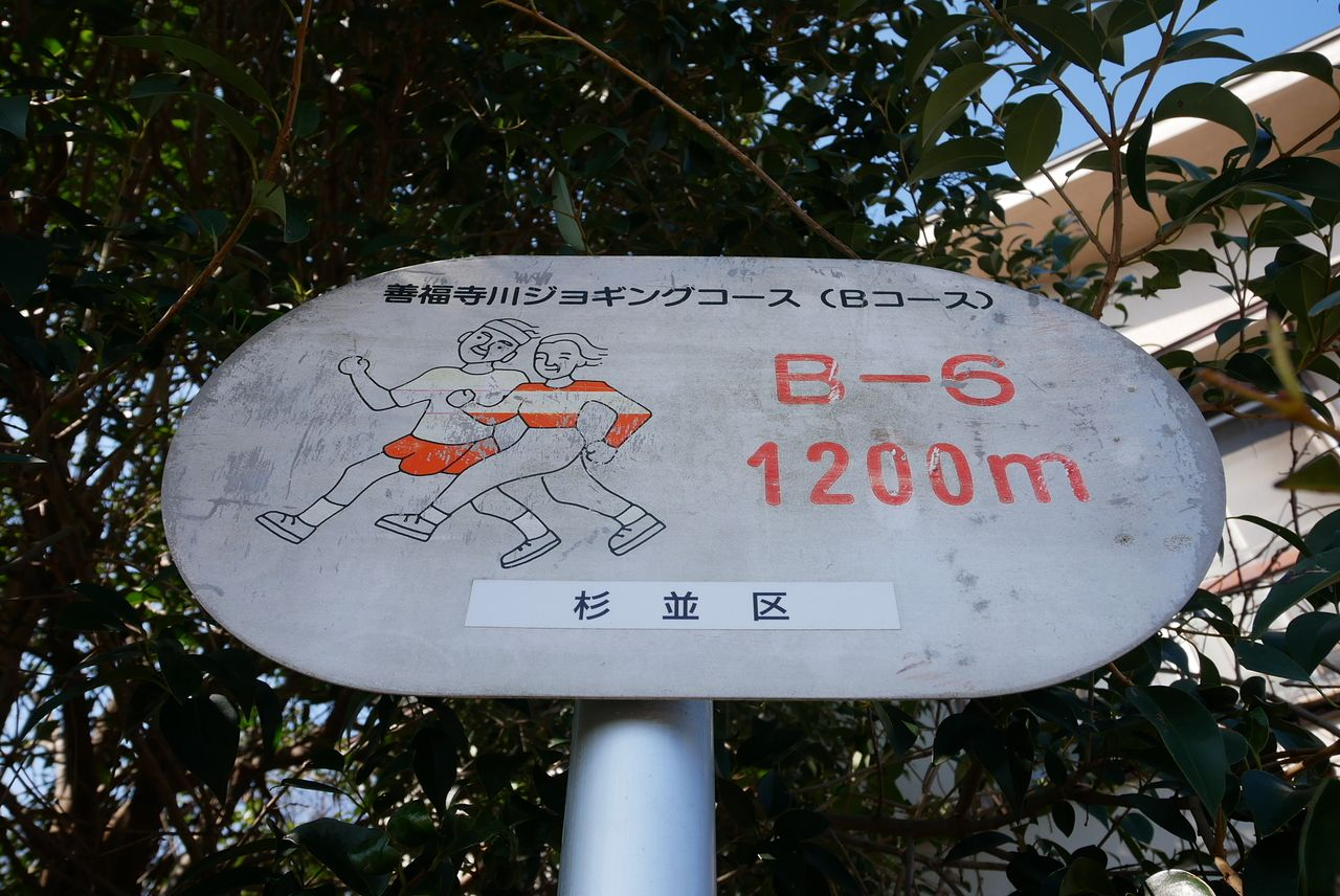 善福寺川ジョギングコース