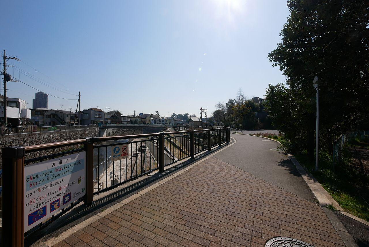 善福寺川遊歩道2