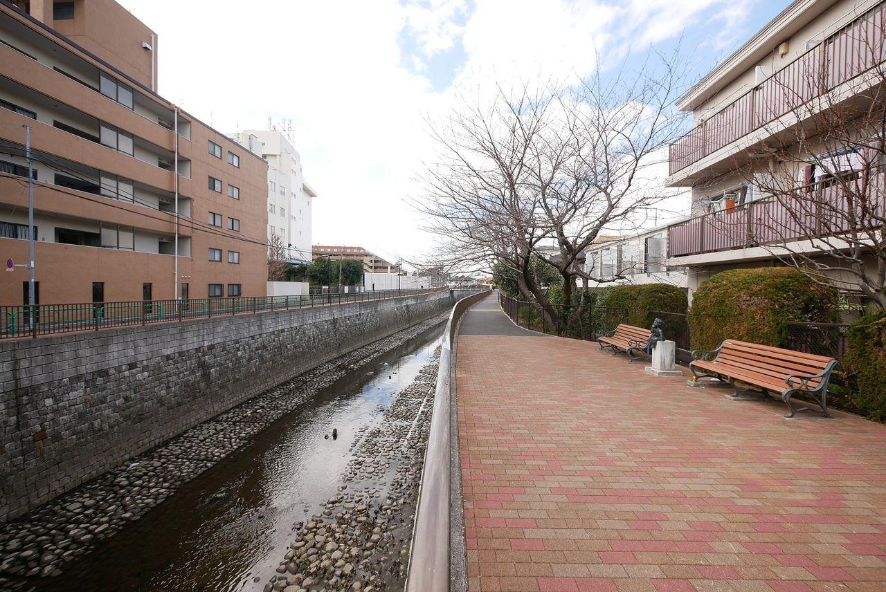 善福寺川遊歩道1