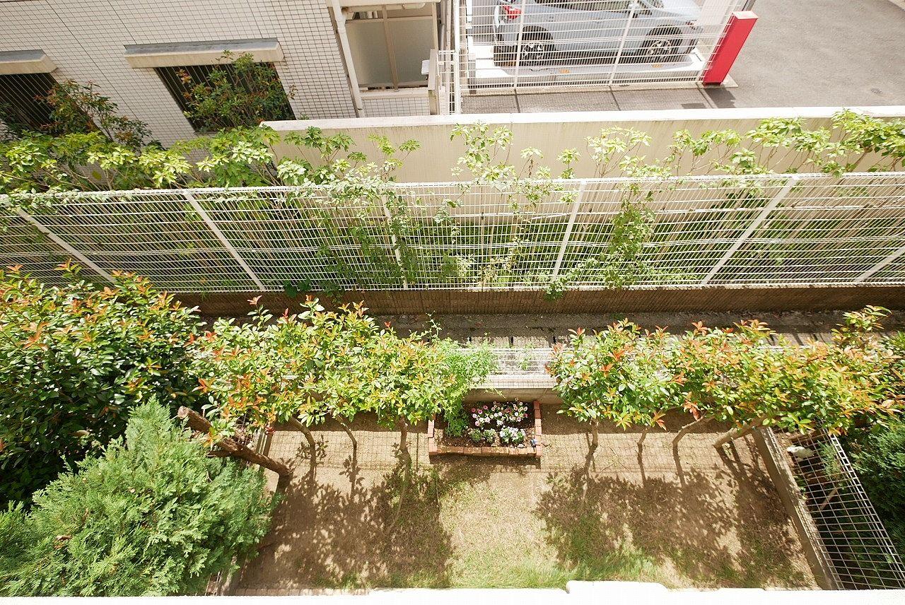 2階バルコニーから大庭を撮ってみました。お子さんが遊ぶ姿が思い浮かびます♪