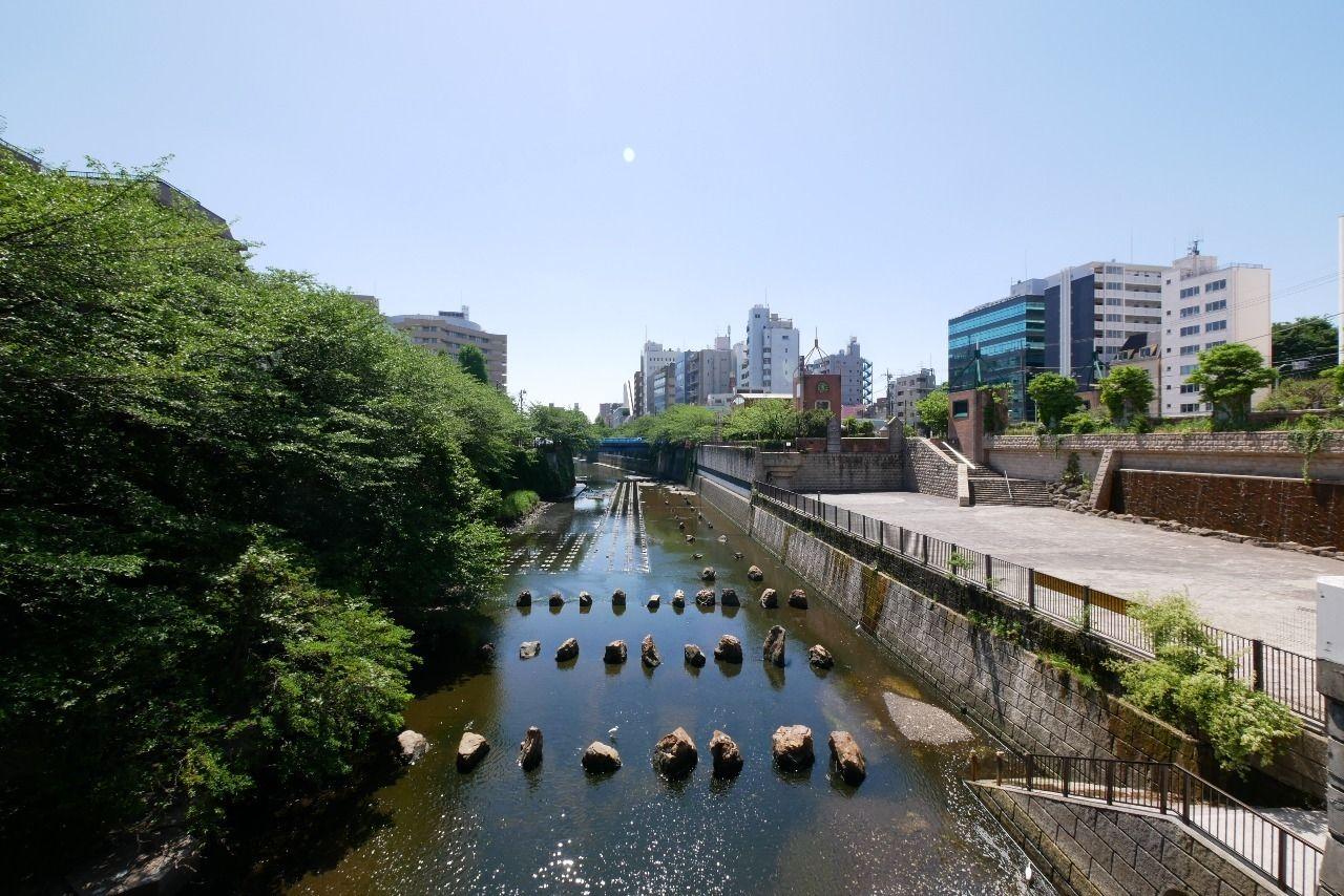 目黒船入場と4月末の目黒川を撮影した写真